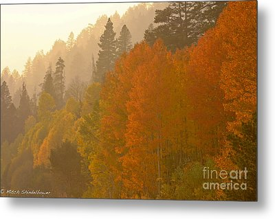 Metal Print featuring the photograph Hope Valley by Mitch Shindelbower