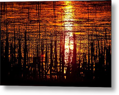 Horicon Marsh Sunset Wisconsin Metal Print by Steve Gadomski