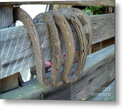 Horse Shoes Metal Print
