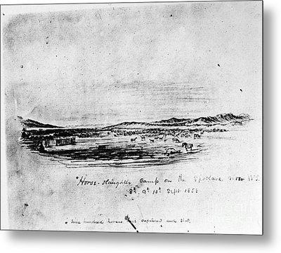 Horse Slaughter Camp 1858 Metal Print by Granger