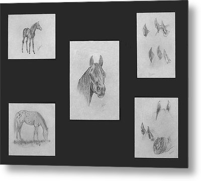 Metal Print featuring the painting Horse Study by Alethea McKee
