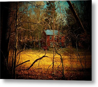 House In The Forest Metal Print by Joyce Kimble Smith