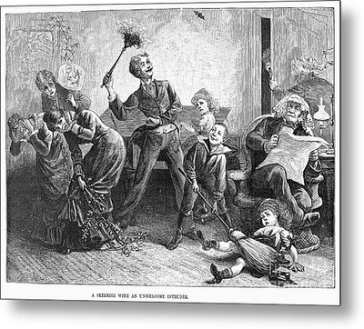 Household Pest, 1878 Metal Print