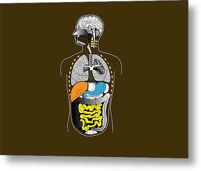 Human Internal Organs, Artwork Metal Print by Francis Leroy, Biocosmos