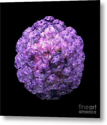 Metal Print featuring the digital art Human Papilloma Virus  10 by Russell Kightley