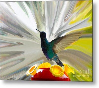 Hummingbird Series Vii Metal Print by Al Bourassa