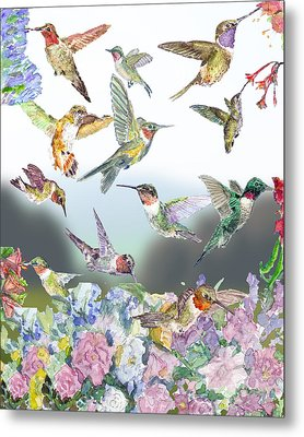 Hummingbirds Galore Metal Print