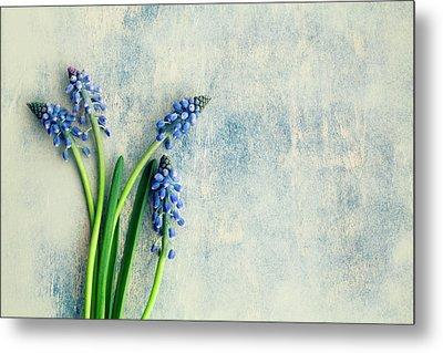 Hyacinth Metal Print by Jim Franco