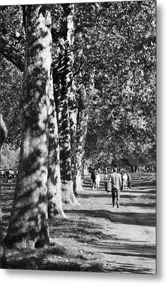 Metal Print featuring the photograph Hyde Park Trees by Maj Seda