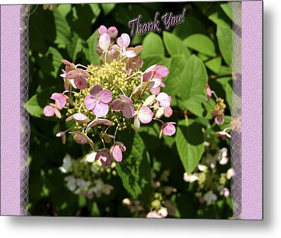 Hydrangea Thank You Metal Print by Larry Bishop