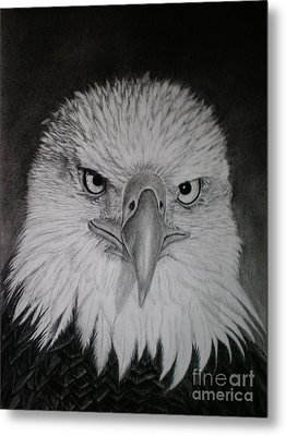 Metal Print featuring the drawing I Am Watching You by Paula L