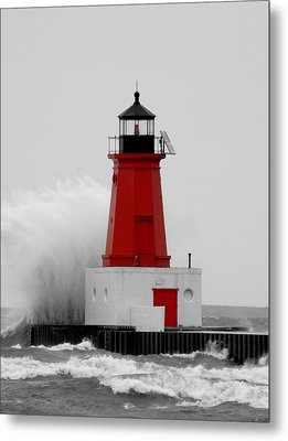 Metal Print featuring the photograph I Can Weather The Storm by Mark J Seefeldt