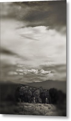 I Dreamed That Love Would Never Die Metal Print by Laurie Search