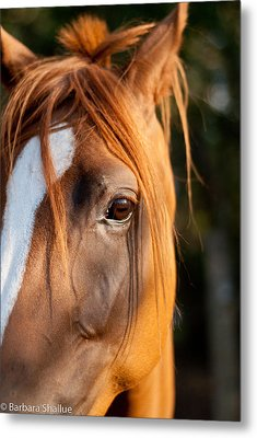 I See You Metal Print by Barbara Shallue