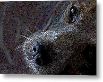 I See You Metal Print by One Rude Dawg Orcutt
