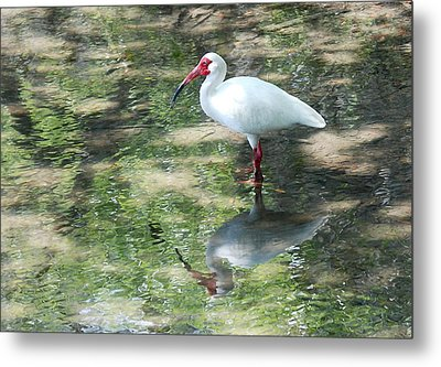 I Stand Alone Metal Print by Kathy Gibbons
