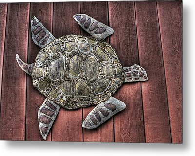 I Swim On The Barn Wall Metal Print by William Fields