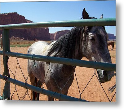 Metal Print featuring the photograph I Want To Break Free by Dany Lison
