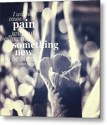 ...i Will Not Cause Pain Without Metal Print by Traci Beeson