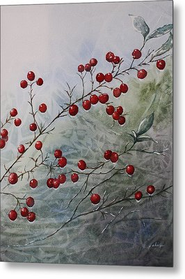 Iced Holly Metal Print by Patsy Sharpe