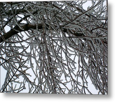 Icey Shield Metal Print by Joshua Dwyer