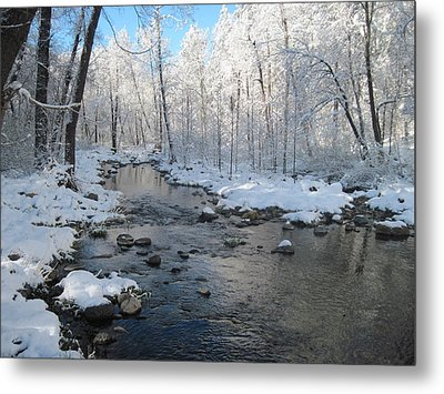 Icing On The Trees Metal Print by Sandy Tracey