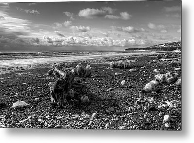 Metal Print featuring the photograph Icy Alaskan Beach by Michele Cornelius