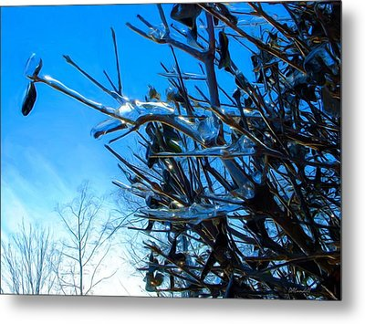 Metal Print featuring the photograph Icy Trim by Dennis Lundell
