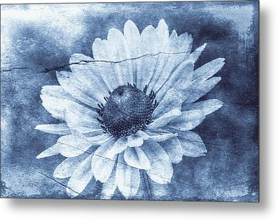 If Daisies Wore Blue Jeans Metal Print