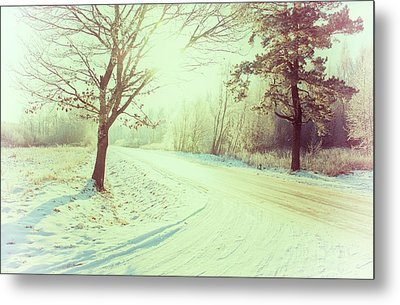 Illuminated By Sun On Snowy Forest Path Metal Print by Rambynas