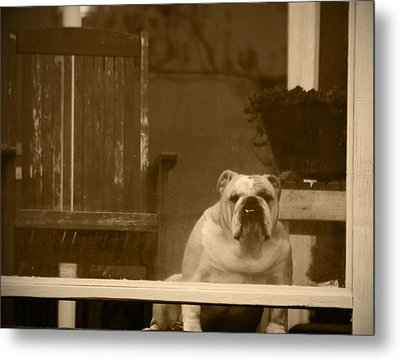 I'm Waiting For You Metal Print by Kym Backland
