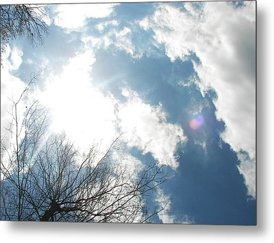 Metal Print featuring the photograph Imagination by Pamela Hyde Wilson