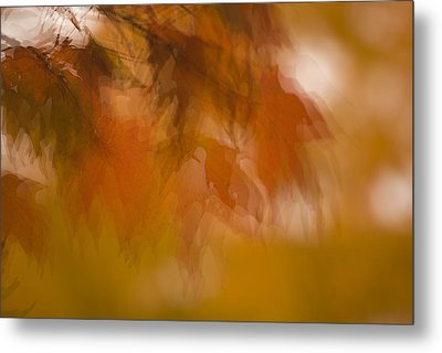 Impressionistic Maple Metal Print