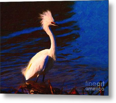 Impressions Of A Snowy Egret . Painterly Metal Print by Wingsdomain Art and Photography