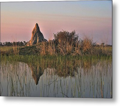 In A Mirror Metal Print by William Fields