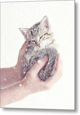 In Safe Hands  Metal Print
