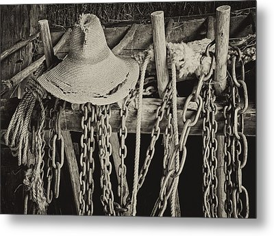 Metal Print featuring the photograph In The Barn by Nancy De Flon