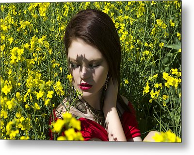 In The Canola Metal Print by Waywardimages Waywardimages