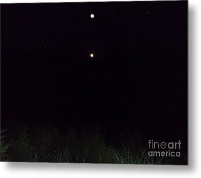 In The Company Of The Moon Metal Print