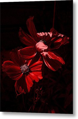 In The Cosmos Metal Print by Yvonne Scott