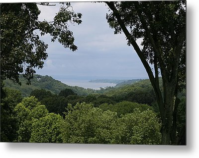 In The Jungle  Metal Print by Paul SEQUENCE Ferguson             sequence dot net