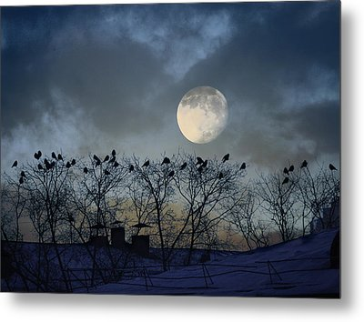 In The Moon Light Metal Print