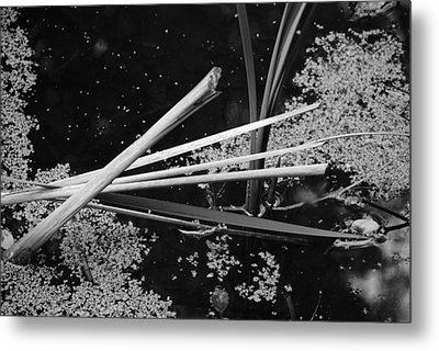 Metal Print featuring the photograph In The Pond Asian Influence by Kathleen Grace