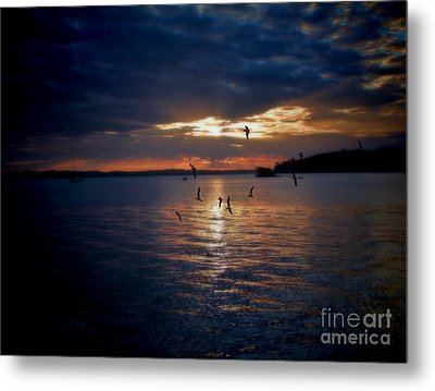In To The Light Metal Print by Karen Lewis