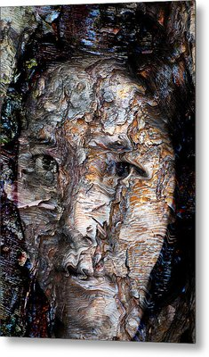 In Transition Metal Print by Christopher Gaston