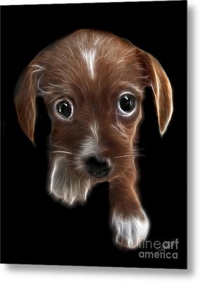 Innocent Loving Eyes	 Metal Print by Peter Piatt