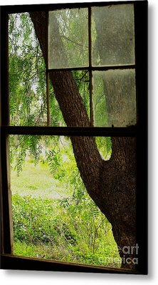 Metal Print featuring the photograph Inside Looking Out by Blair Stuart