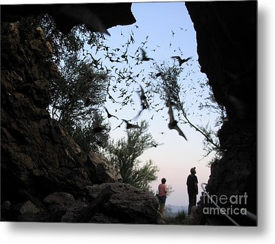 Inside The Bat Cave Metal Print by Mark Robbins