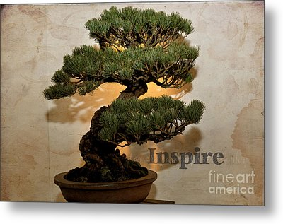 Metal Print featuring the photograph Inspire by Tamera James