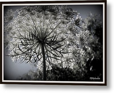 Intertwine Metal Print by Priscilla Richardson